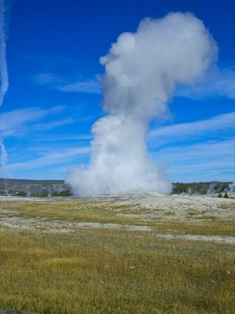 a geyser in the yellowstone park at summer