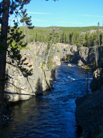 a river in the yellowstone park at summer