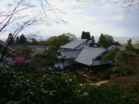 a japanese house in a park in tokyo at summer