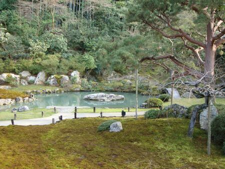 a pond in a park in tokyo at summer
