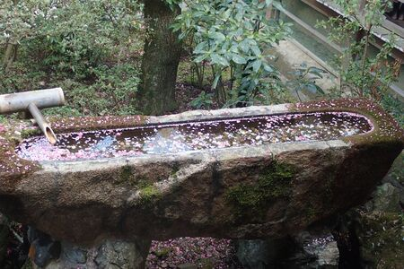 a trough made of stone with full water Banco de Imagens