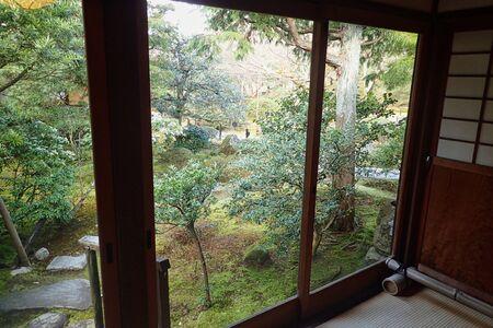 windows view to a garden in summer