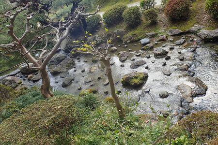 a small river with stones in the middle Banco de Imagens