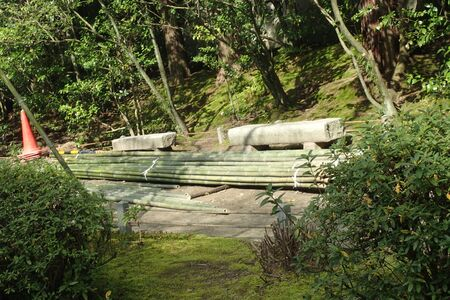 bomboo woods in a park in japan Banco de Imagens