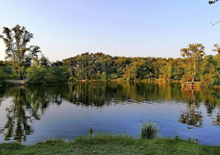 a pond in the sunset at summer