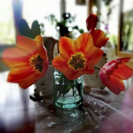 flowers in a glass on a table inside