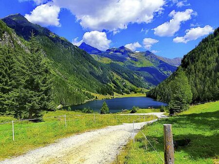 a path to a lake in the mountains at summer
