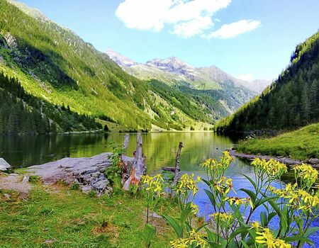 a clear lake in the mountains at summer