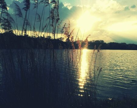 sunset over a pond in summertime