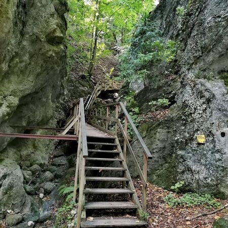 a wooden step trough the rocks at summer
