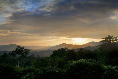 Sunset through the mountain of trees at wooden balcony, phu lang ka , phayao province. Thailand