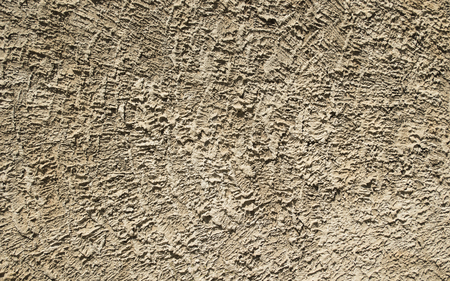 textured wall: cement textured wall