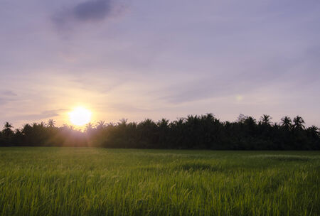 god's cow: Beautiful Sunsets The Prairie