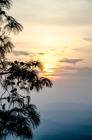 loei: Phu Kradueng National Park Loei Province Thailand