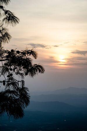 kradueng: Phu Kradueng National Park Loei Province Thailand