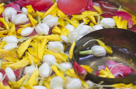 songkran: Thai festival Songkran
