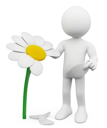 3d white people. Man tears off petals of daisy. Concept of choosing. Isolated white background.