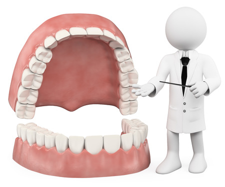 odontology: 3d white people. Professor showing a denture. Isolated white background. Stock Photo
