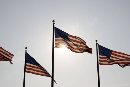 United States of America Flags photo