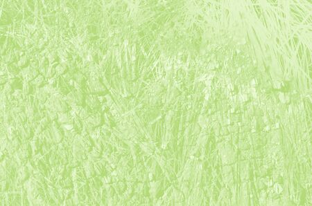 abstract light green background with copy space for design.