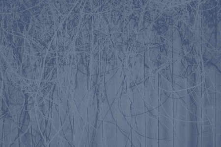 abstract gray and dark blue colors background for design.