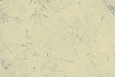 abstract gray and pale yellow colors background for design.