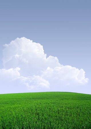 青空の背景に緑色のフィールドです。