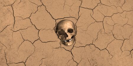 Ecological disaster on earth. Skull in the dried ground.