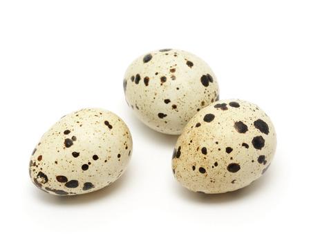 huevo de codorniz aislado en el fondo blanco