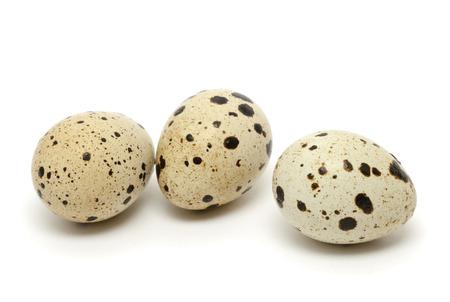 흰 배경에 고립 메추라기 달걀 스톡 콘텐츠 - 72908128