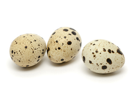 Quail egg isolated on white background