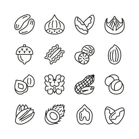 Nut flat line icon collection. Hazelnut, pecan, almond, chestnut, pistachio, walnut, peanut isolated set. Vector illustration. Archivio Fotografico - 137168128