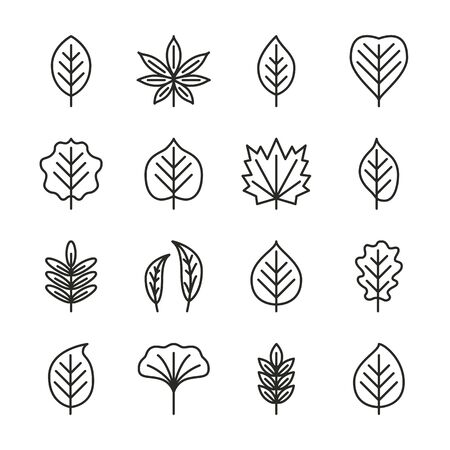 Tree leaves flat line icons set - aspen, linden, maple, willow, chestnut, oak, acacia. Autumn plant pixel perfect collection. Vector illustration.
