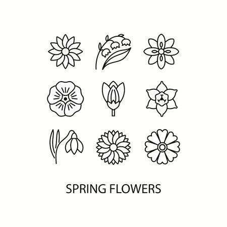 Frühlingsblumen flache Linie Icons Set - Narzisse, Krokus, Maiglöckchen, Flachs, Schneeglöckchen. Vektor-Illustration.