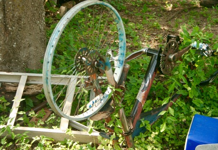 Old rusted bike with overgrown vines