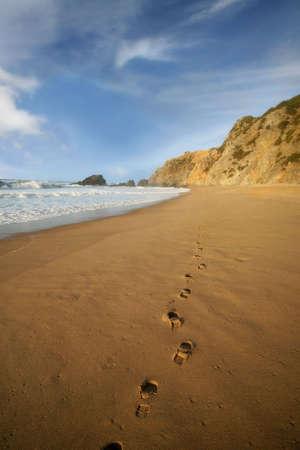 shoeprint: Footprints