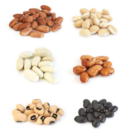 fasulye: Assortment of different types of beans: red kidney beans, lab lab (hyacinth) beans, white (cannelini) beans, pinto beans, black eyed peas and black beans