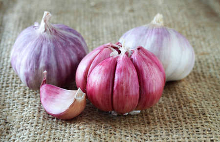 Garlic bulbs over rustic background