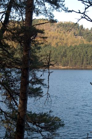 ness river: lake view