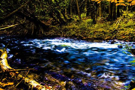 primal: A primal fast moving river