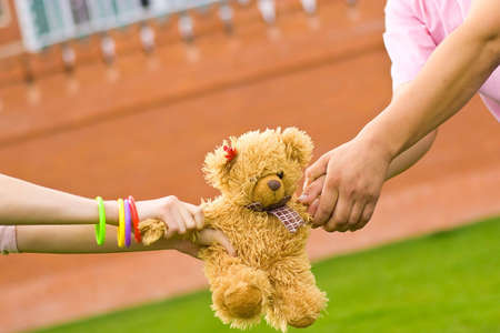 rivalry: boys and girls hands holding small teddy bear - rivalry concept Stock Photo