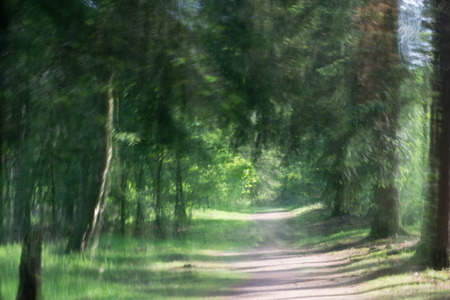 deliberately: photo artistic impression of a path through a green forest deliberately out of focus Stock Photo
