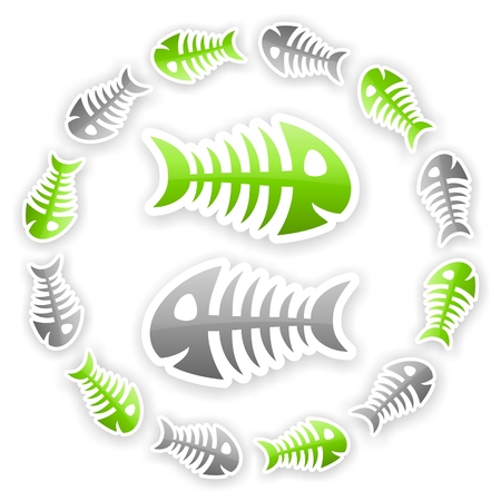 green and gray glossy fish bone background with light shadow effect photo