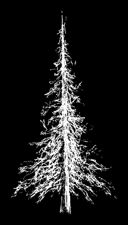vector hand drawn illustration of tree on the black background