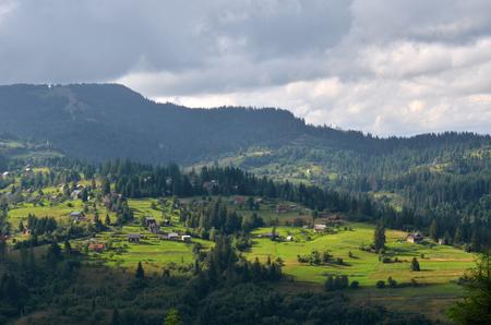 carpathian: Carpathian mountains landscape