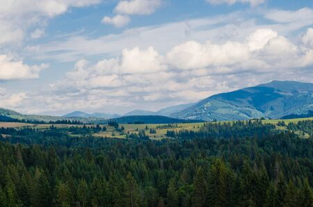 carpathian: Carpathian mountains with forest and rural houses