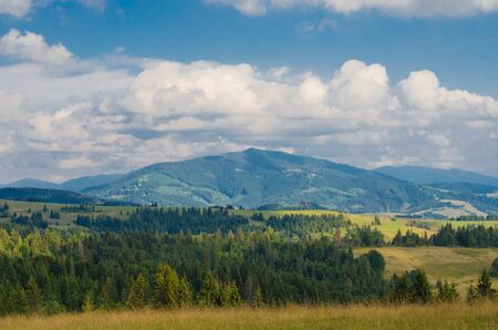 Carpathian mountains with forest and rural houses