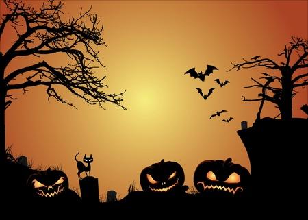 spider' s web: Halloween and Jack O Lanterns Illustration