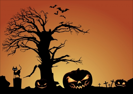 spider' s web: Halloween