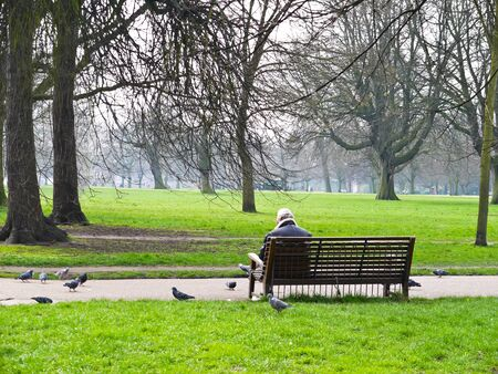 Man in the garden with the pigeons in London , UK photo